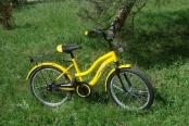 velosiped-20_03