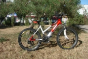 velosiped-24_01