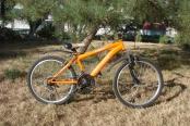 velosiped-24_02