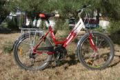 velosiped-26_02