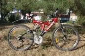 velosiped-26_06