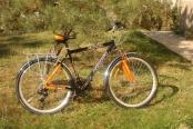 velosiped-28_02