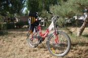 velosiped-detskoe-sidenie_01